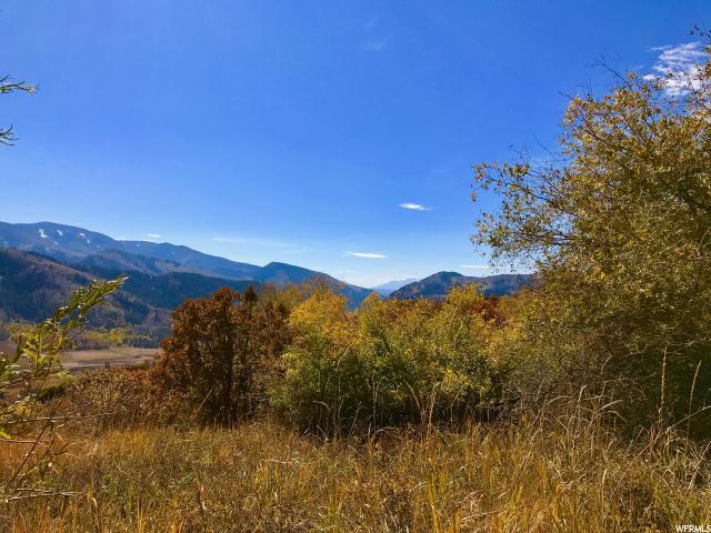5595 MOUNTAIN VIEW MOUNTAIN VIEW Oakley, UT 84055 - MLS #: 1445408