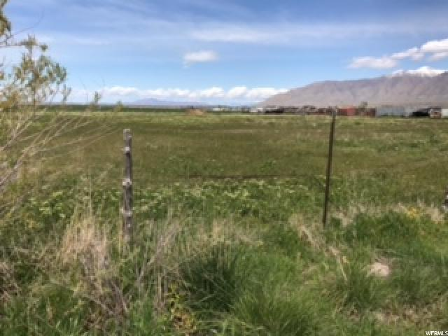 954 W ERDA WAY Erda, UT 84074 - MLS #: 1445476