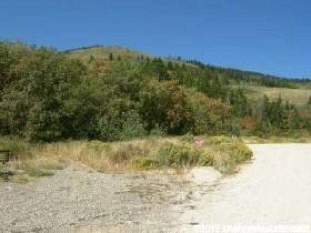 69 N BLACKFOOT CIR Fish Haven, ID 83287 - MLS #: 1446435