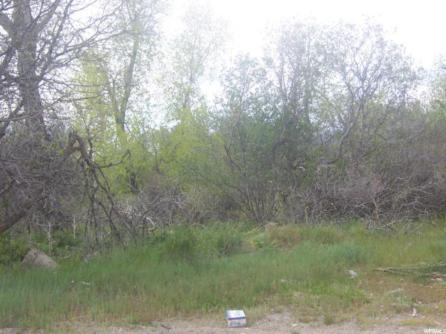 Mount Pleasant, UT 84647 - MLS #: 1447759