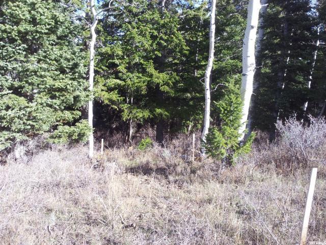 Spanish Fork, UT 84660 - MLS #: 1448122