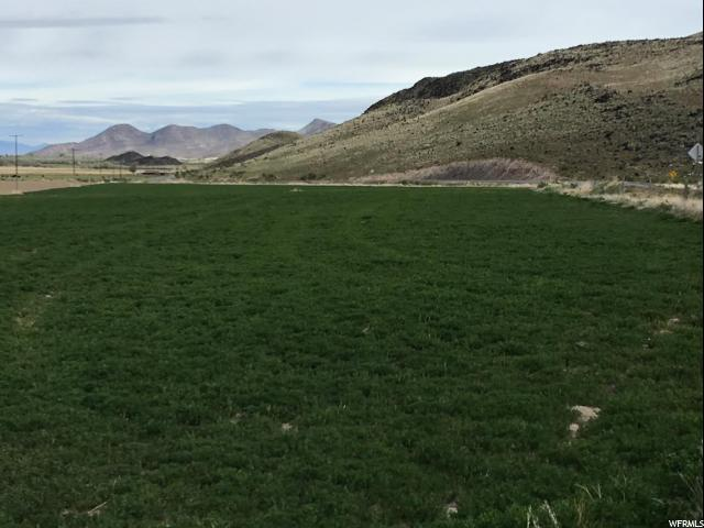 Farm / Ranch / Plantation for Rent at 155 950 Venice, Utah 84701 United States