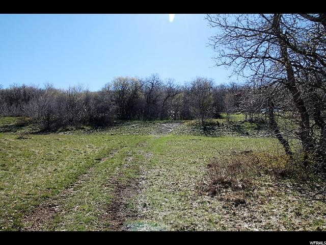 22622 N 13792 Fairview, UT 84629 - MLS #: 1450026