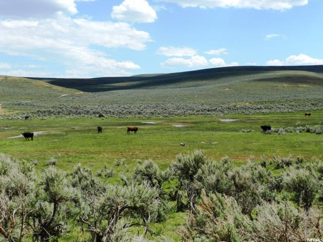 Land for Sale at Address Not Available Randolph, Utah 84064 United States