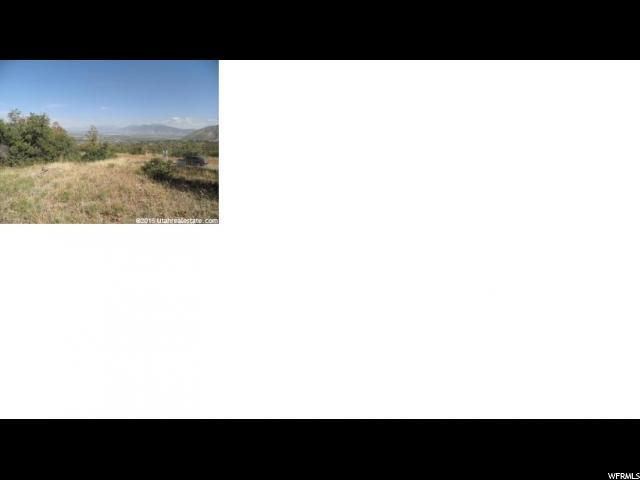 1390 S EAGLE NEST DR Woodland Hills, UT 84653 - MLS #: 1451864