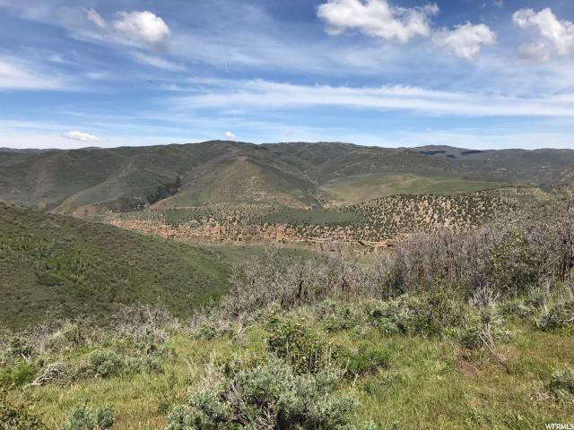 Land for Sale at 162 TONY'S CANYON Road Echo, Utah 84024 United States