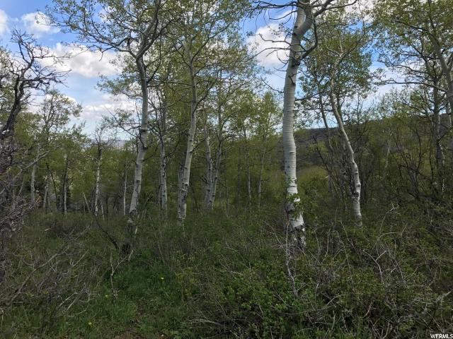Land for Sale at 122 W ELKRIDGE Road Echo, Utah 84024 United States