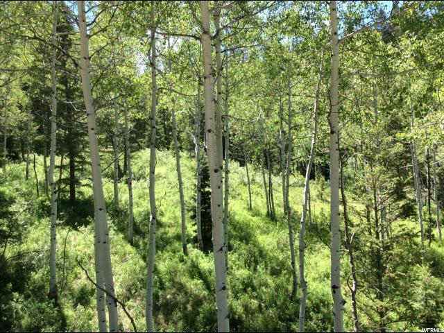 Additional photo for property listing at 22518 E BRIGHTON Circle 22518 E BRIGHTON Circle Spanish Fork, Utah 84660 United States