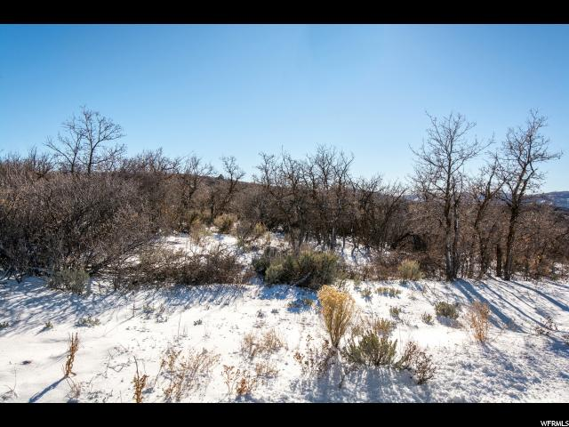 Additional photo for property listing at 1420 E LASSO Trail 1420 E LASSO Trail 希伯城, 犹他州 84032 美国