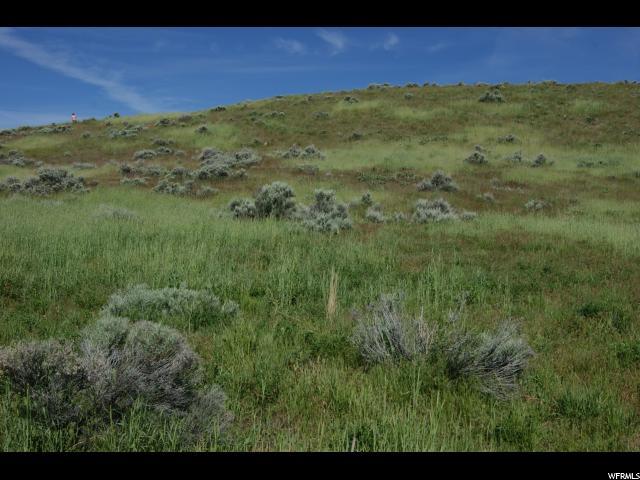 Land for Sale at 10905 N WALLACE Lane Thatcher, Utah 84337 United States