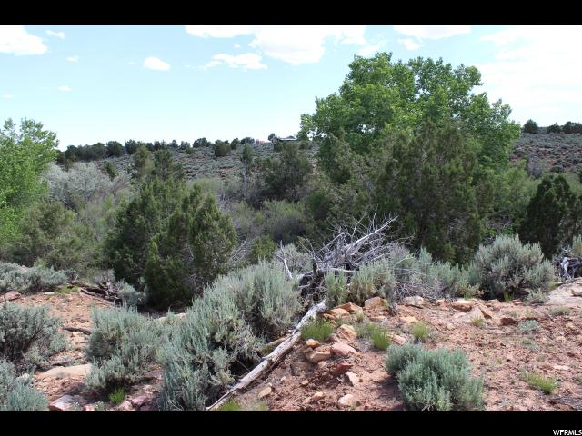 Additional photo for property listing at Address Not Available  Blanding, Utah 84511 United States