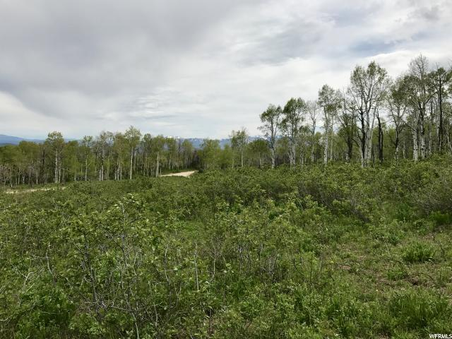 2648 S FOREST MEADOW RD Wanship, UT 84017 - MLS #: 1455013