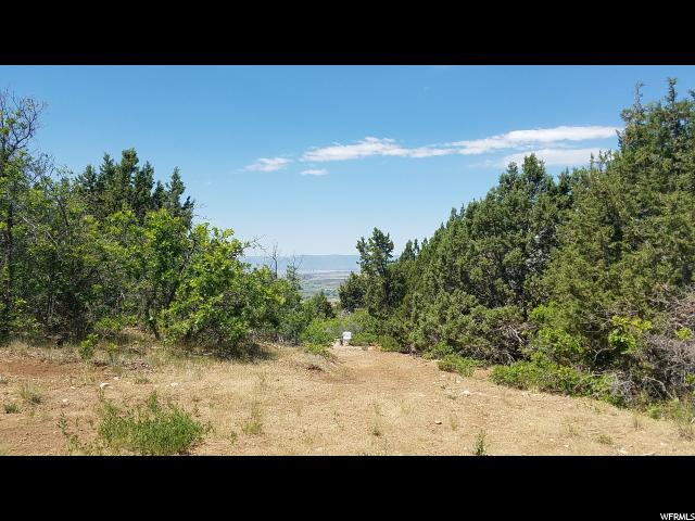 22385 N CEDAR RIDGE DRIVE Fairview, UT 84629 - MLS #: 1455387