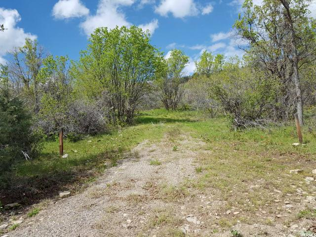 Land for Sale at 118 E HAWTHORN SPRINGS Road 118 E HAWTHORN SPRINGS Road Fairview, Utah 84629 United States