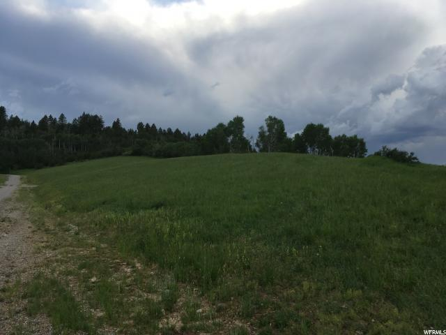 1 TINCUP MEADOWS RD Freedom, WY 83120 - MLS #: 1456641