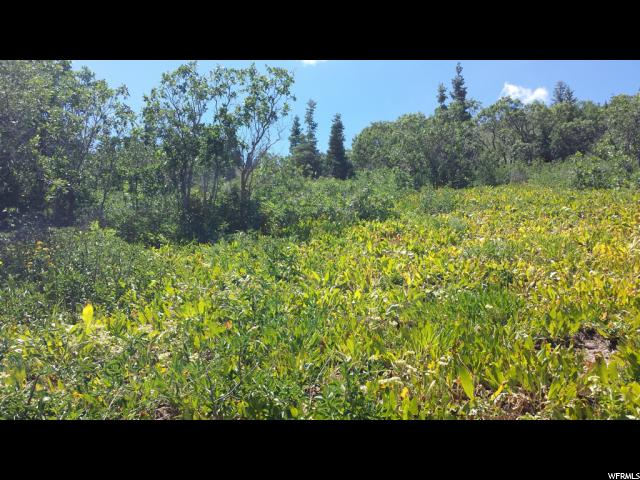 Land for Sale at 655 N MATTERHORN Drive 655 N MATTERHORN Drive Park City, Utah 84098 United States