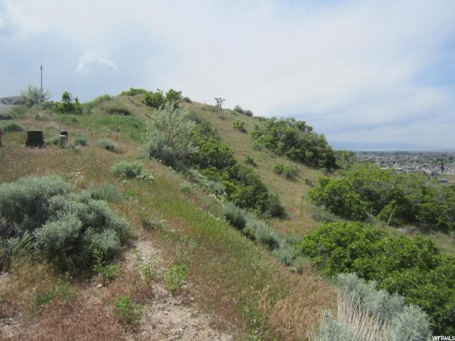 Additional photo for property listing at 3256 E HAWK Drive 3256 E HAWK Drive Spanish Fork, 犹他州 84660 美国