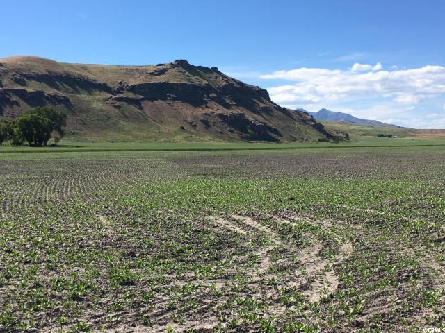 Additional photo for property listing at 3550 N HWY 23 W 3550 N HWY 23 W Cache Junction, Utah 84304 États-Unis