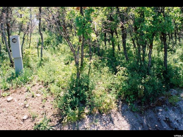 Land for Sale at 8 S RED FOX WAY Birdseye, Utah 84629 United States