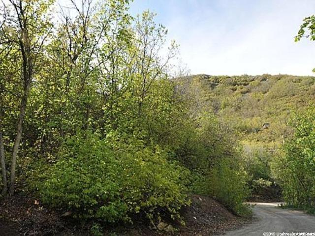 Additional photo for property listing at 72 LOWER CANYON 72 LOWER CANYON Midway, Utah 84049 États-Unis
