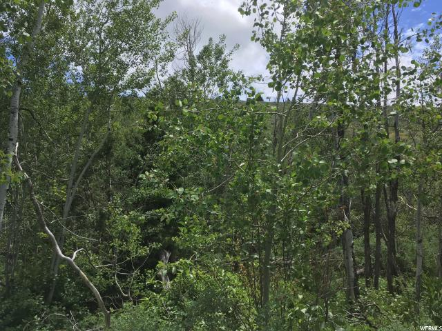 Additional photo for property listing at 160 MILES CANYON Road 160 MILES CANYON Road Montpelier, 爱达荷州 83254 美国