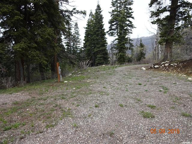 Additional photo for property listing at 14555 E PINE SPRINGS Drive  Fairview, Utah 84629 United States
