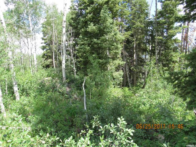 Additional photo for property listing at 33 SCR 2 33 SCR 2 Mount Pleasant, Юта 84647 Соединенные Штаты