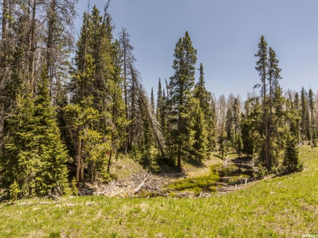 Additional photo for property listing at 3397 MONVISO LOT 28 Trail 3397 MONVISO LOT 28 Trail Kamas, Utah 84036 United States