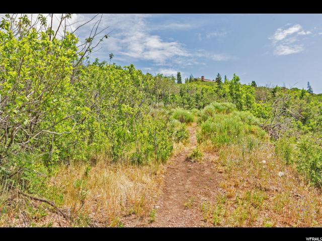 Additional photo for property listing at 253 MCHENRY Avenue 253 MCHENRY Avenue Park City, Utah 84060 Estados Unidos
