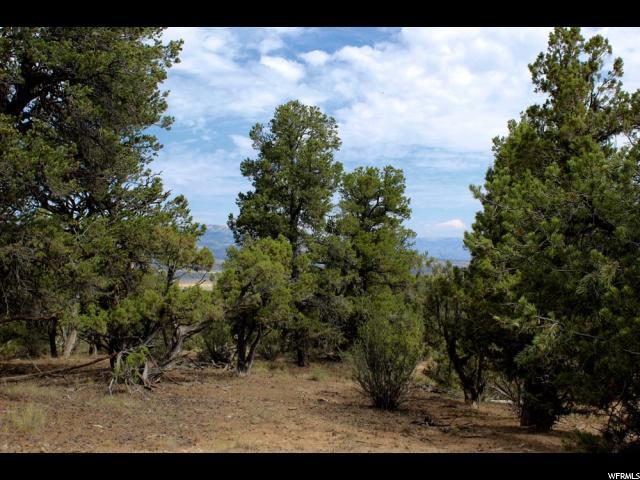 Additional photo for property listing at 36 ORANGE MOUNTAIN MT 36 ORANGE MOUNTAIN MT Fruitland, Utah 84027 Estados Unidos