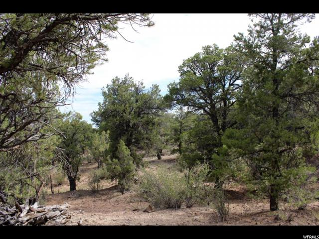 Terreno por un Venta en 36 ORANGE MOUNTAIN MT 36 ORANGE MOUNTAIN MT Fruitland, Utah 84027 Estados Unidos