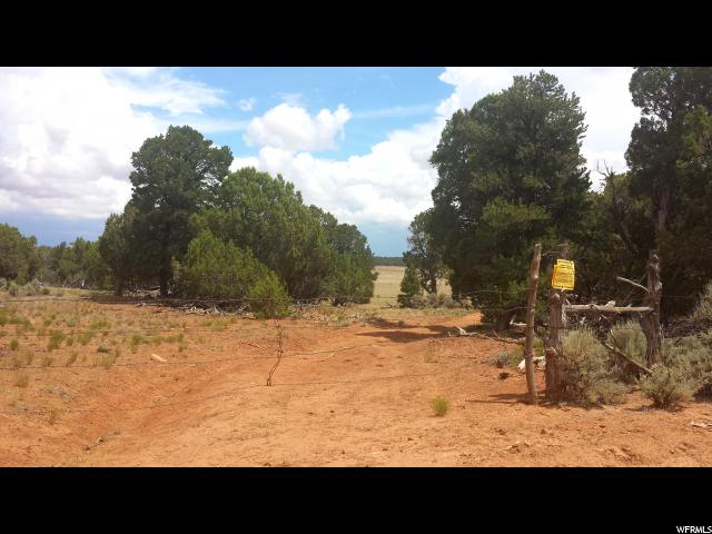 أراضي للـ Sale في 500 E STURGEON/SCHAFER CR320 N Monticello, Utah 84535 United States