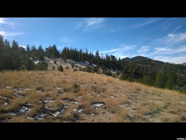 Additional photo for property listing at Address Not Available  Duchesne, Utah 84021 États-Unis