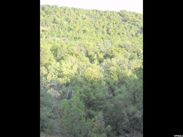 Additional photo for property listing at Address Not Available  Moab, Utah 84532 États-Unis