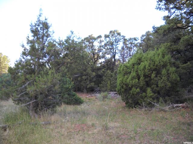 Additional photo for property listing at Address Not Available  Moab, Utah 84532 Estados Unidos