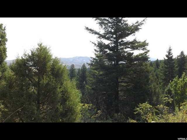 Земля для того Продажа на Address Not Available Lava Hot Springs, Айдахо 83246 Соединенные Штаты