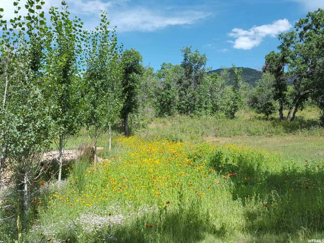 722 N WOLF HOLLOW RD Unit 722 Mount Pleasant, UT 84647 - MLS #: 1467342
