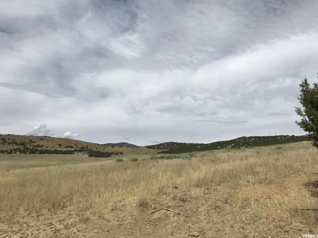 9100 E 23000 Fairview, UT 84629 - MLS #: 1467417