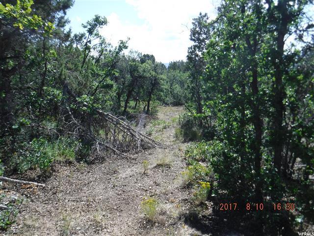 Additional photo for property listing at 22380 N CEDAR RIDGE Drive 22380 N CEDAR RIDGE Drive Fairview, Utah 84629 United States