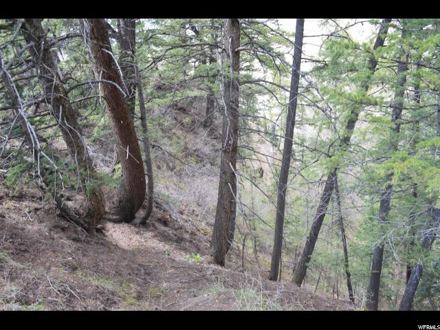 9315 RIDGE PINE DR Heber City, UT 84032 - MLS #: 1468764