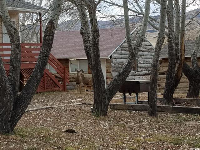 Additional photo for property listing at 525 W 200 N 525 W 200 N Mona, Utah 84645 Estados Unidos