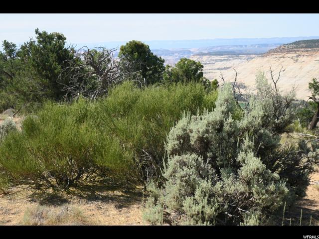 1882 E JUNIPER BRANCH DR Boulder, UT 84716 - MLS #: 1469946