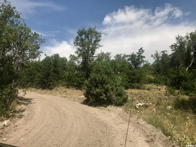 Additional photo for property listing at 23000 N 14500 E 23000 N 14500 E Fairview, Utah 84629 Estados Unidos