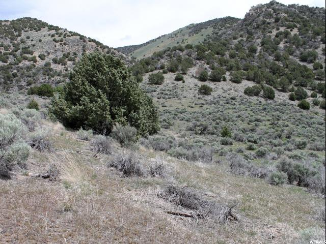 Additional photo for property listing at 129 E VETERANS MEMORIAL HWY 129 E VETERANS MEMORIAL HWY Malad City, Айдахо 83252 Соединенные Штаты