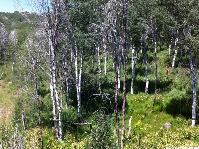 Additional photo for property listing at 9 ASPEN Ridge  Wanship, 犹他州 84017 美国