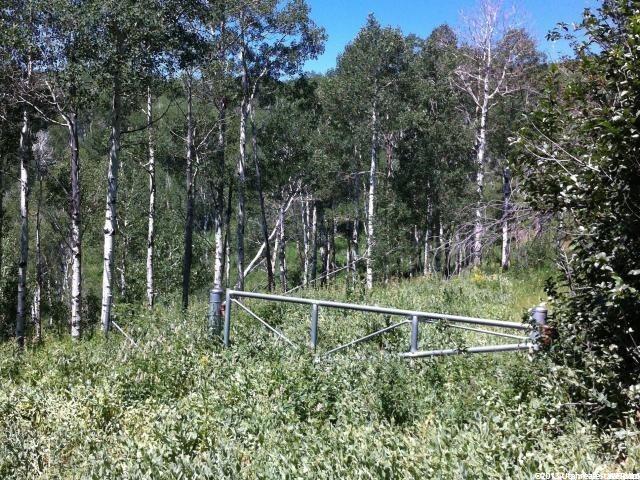 土地 为 销售 在 9 ASPEN Ridge Wanship, 犹他州 84017 美国
