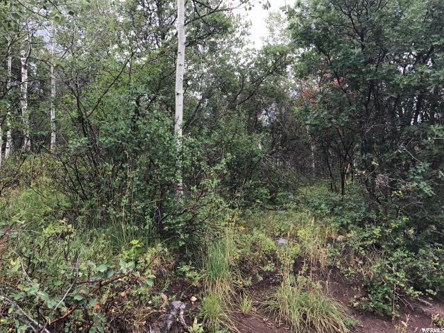 Additional photo for property listing at 135 COMANCHE PASS 135 COMANCHE PASS Oakley, Utah 84055 United States
