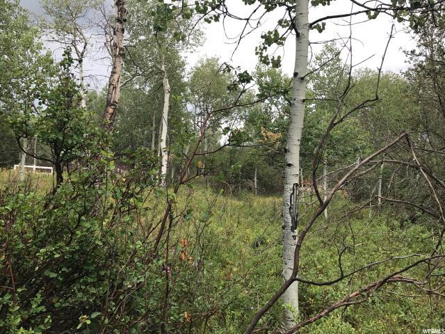 Additional photo for property listing at 135 COMANCHE PASS 135 COMANCHE PASS Oakley, Юта 84055 Соединенные Штаты