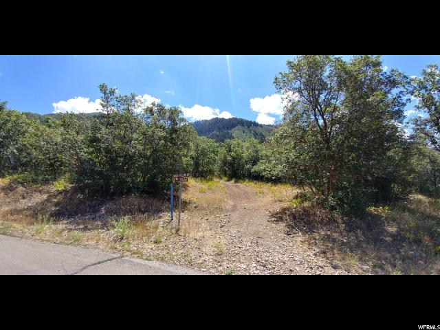 195 E BROADHOLLOW DR Woodland Hills, UT 84653 - MLS #: 1472712