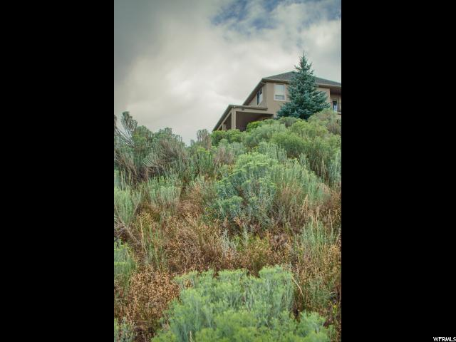 14829 S SADDLE LEAF CT Draper, UT 84020 - MLS #: 1472817